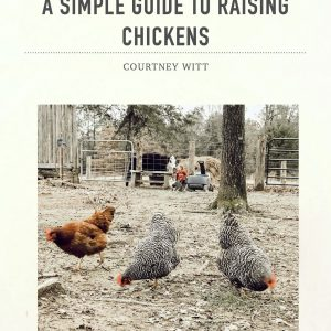 A Simple Guide To Raising Chickens Ebook